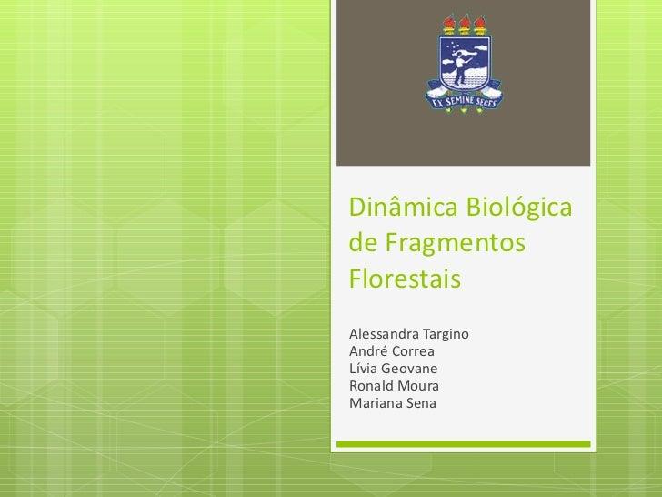 Dinâmica Biológica de Fragmentos Florestais Alessandra Targino André Correa Lívia Geovane Ronald Moura Mariana Sena