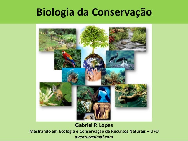 Biologia da Conservação  Gabriel P. Lopes Mestrando em Ecologia e Conservação de Recursos Naturais – UFU aventuranimal.com