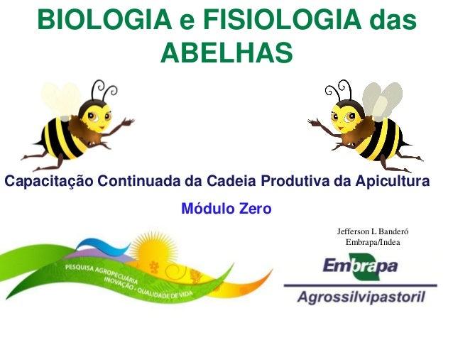 BIOLOGIA e FISIOLOGIA das           ABELHASCapacitação Continuada da Cadeia Produtiva da Apicultura                       ...