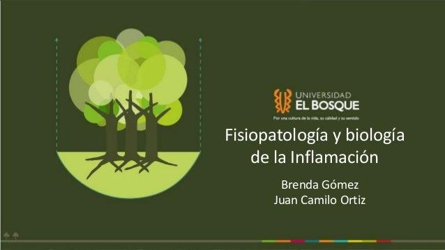 Fisiopatología y biología de la Inflamación Brenda Gómez Juan Camilo Ortiz