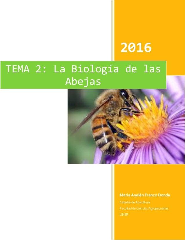 Biologia de las_abejas.