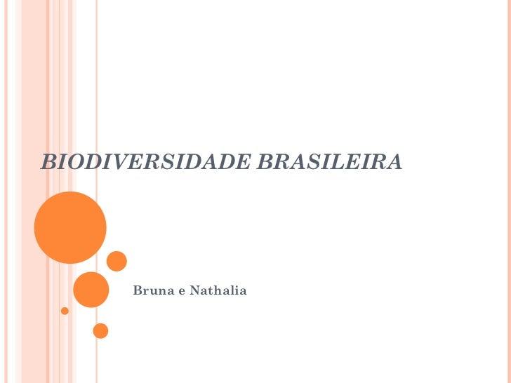 BIODIVERSIDADE BRASILEIRA Bruna e Nathalia