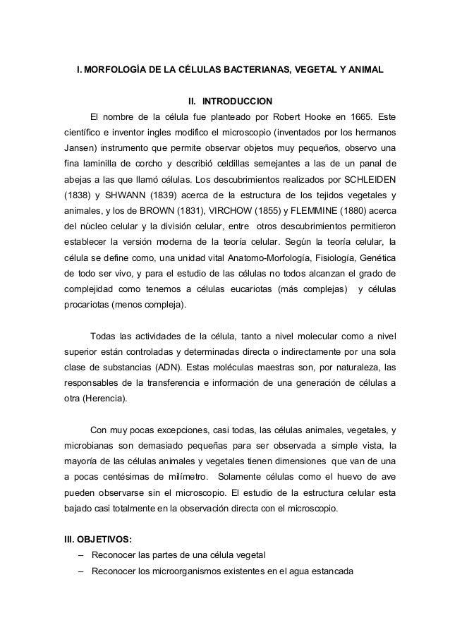 Biologia General Morfología De La Célula