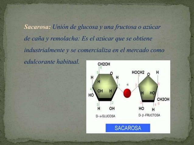 El enlace que se establece entre las dos unidades de monosacáridos recibe el nombre de enlace glucosídico (más correctamen...