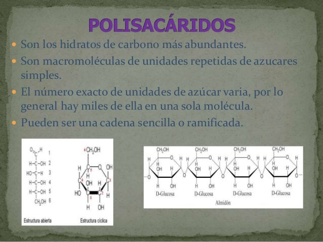  Polisacárido de reserva animal, se encuentra especialmente en las células hepáticas y musculares.  Presentan ramificaci...