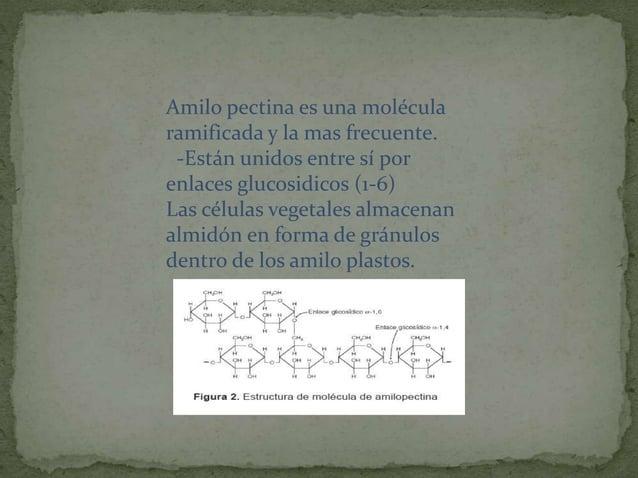  Forma el exoesqueleto en artrópodos y pared celular de los hongos.  Es un polímero no ramificado de la N-acetilglucosam...