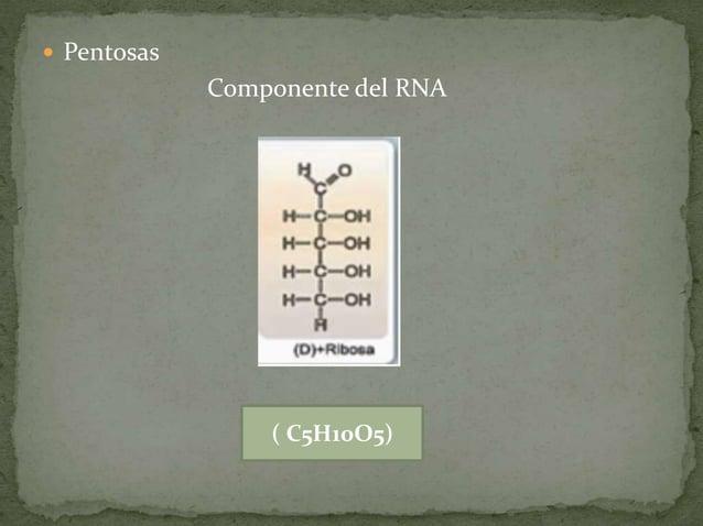  HEXOSAS Cetona Aldehído ( C6H12O6)