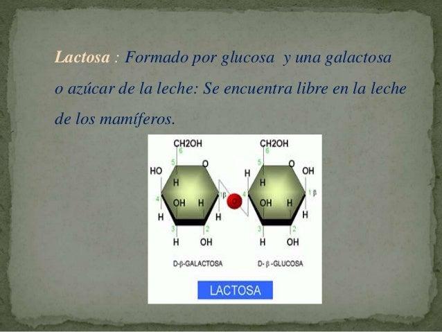 Sacarosa: Unión de glucosa y una fructosa o azúcar de caña y remolacha: Es el azúcar que se obtiene industrialmente y se c...