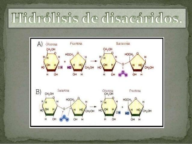  Es un polisacárido de reserva en vegetales.  Están unidos por enlaces 1-4.  Se trata de un polímero de glucosa, formad...