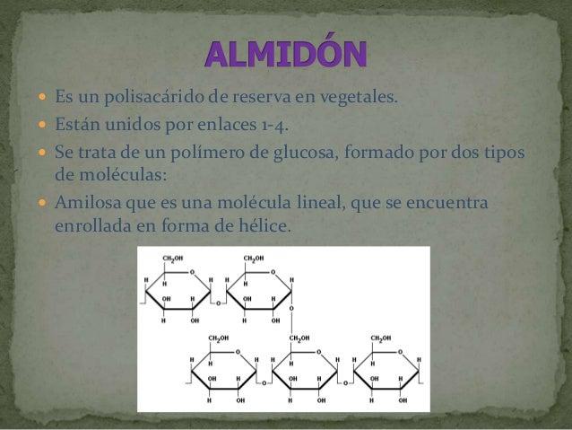  Es la más abundante de los hidratos de carbono  Polisacárido estructural de los vegetales en los que constituye la pare...