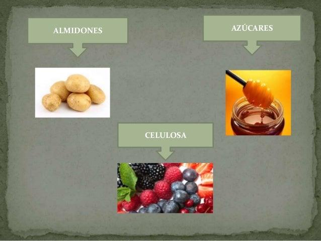  Se componen de átomos de carbono, hidrógeno y oxígeno.  Los azucares y almidones sirven como fuente de energía.  La ce...
