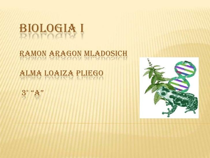 "Biologia IRamonAragonMladosichAlma Loaiza Pliego 3° ""A""<br />"