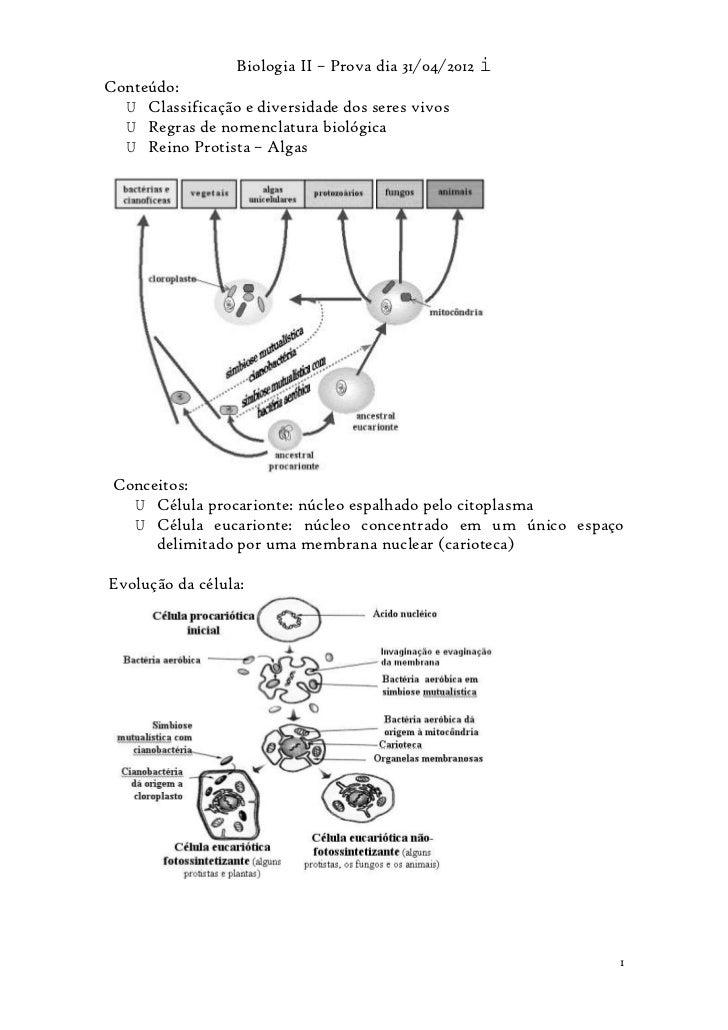 Biologia II – Prova dia 31/04/2012 iConteúdo:  U Classificação e diversidade dos seres vivos  U Regras de nomenclatura bio...