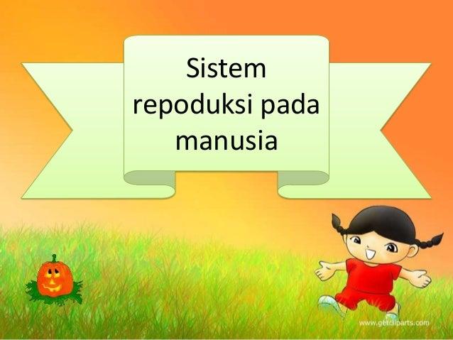 Sistem repoduksi pada manusia