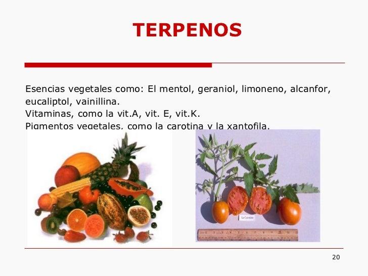 testoterona