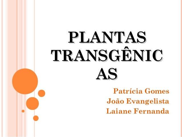 PLANTAS TRANSGÊNIC AS Patrícia Gomes João Evangelista Laiane Fernanda