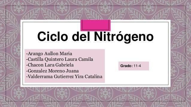 Ciclo del Nitrógeno -Arango Aullon Maria -Castilla Quintero Laura Camila -Chacon Lara Gabriela -Gonzalez Moreno Juana -Val...