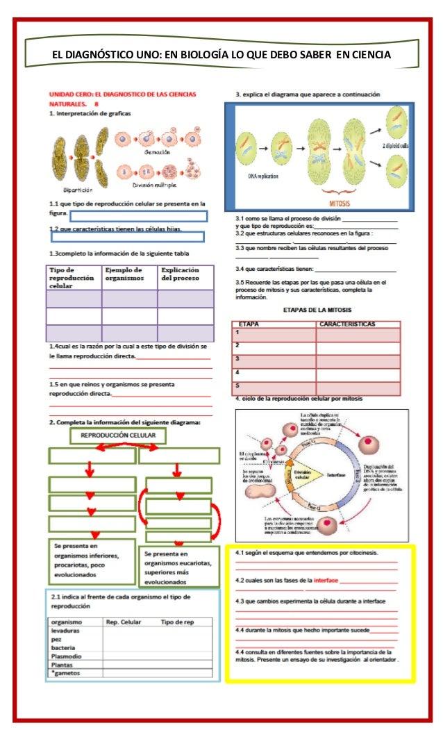 Biología grado noveno modulo 1