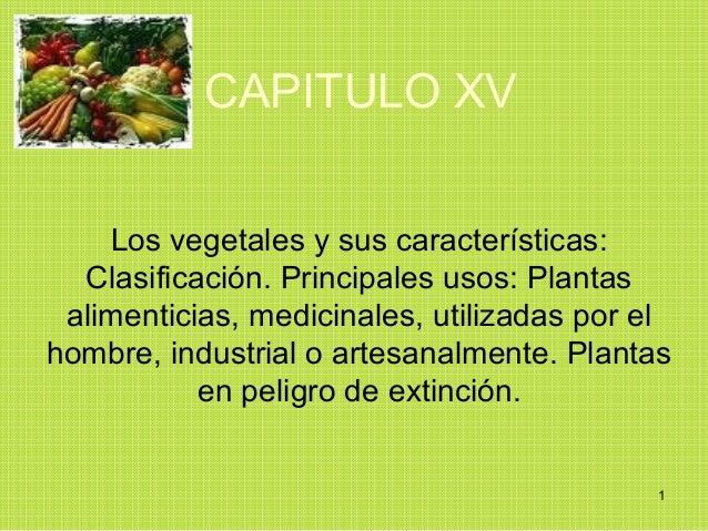 CAPITULO XV    Los vegetales y sus características:  Clasificación. Principales usos: Plantas alimenticias, medicinales, u...