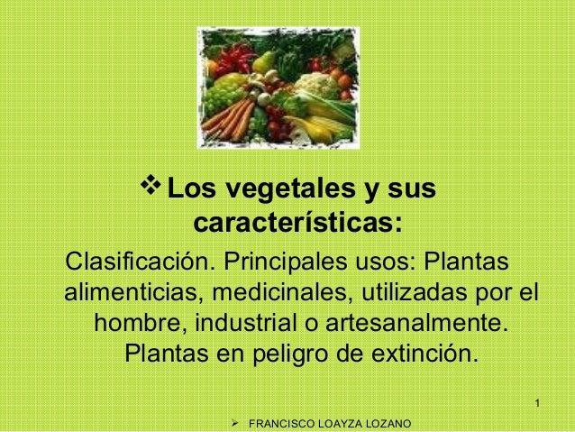  Los vegetales y sus características: Clasificación. Principales usos: Plantas alimenticias, medicinales, utilizadas por ...