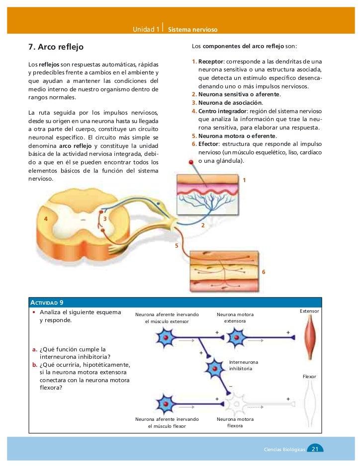 Biologia santillana