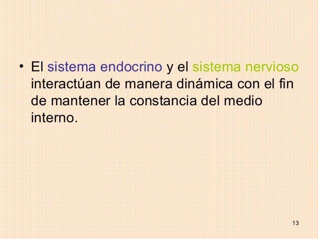 • El sistema endocrino y el sistema nervioso  interactúan de manera dinámica con el fin  de mantener la constancia del med...
