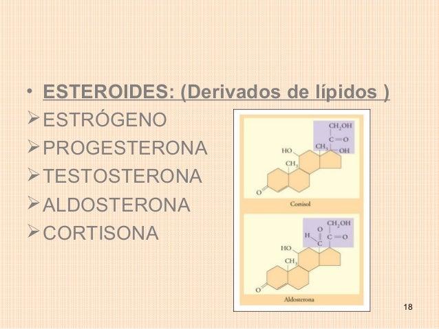 • ESTEROIDES: (Derivados de lípidos ) ESTRÓGENO PROGESTERONA TESTOSTERONA ALDOSTERONA CORTISONA                      ...