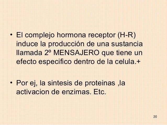 • El complejo hormona receptor (H-R)  induce la producción de una sustancia  llamada 2º MENSAJERO que tiene un  efecto esp...
