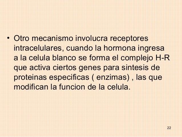 • Otro mecanismo involucra receptores  intracelulares, cuando la hormona ingresa  a la celula blanco se forma el complejo ...