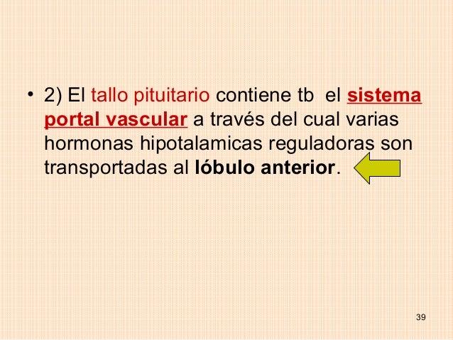 • 2) El tallo pituitario contiene tb el sistema  portal vascular a través del cual varias  hormonas hipotalamicas regulado...