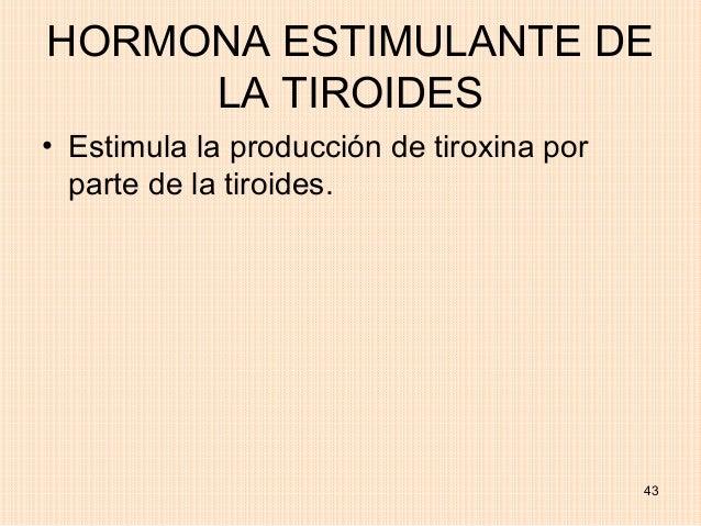HORMONA ESTIMULANTE DE     LA TIROIDES• Estimula la producción de tiroxina por  parte de la tiroides.                     ...