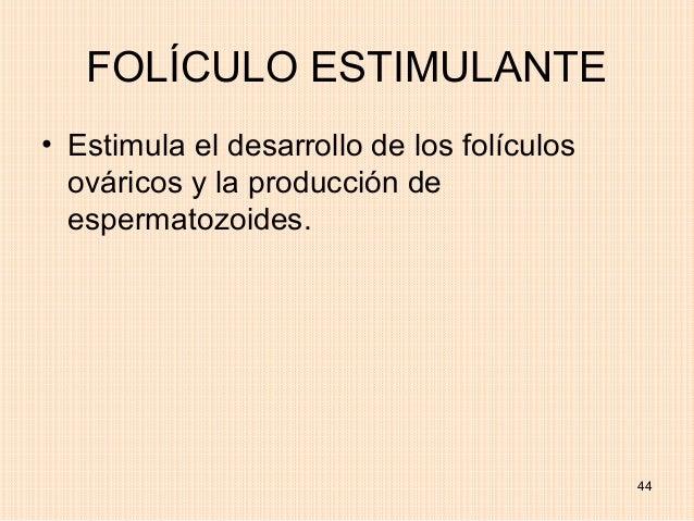 FOLÍCULO ESTIMULANTE• Estimula el desarrollo de los folículos  ováricos y la producción de  espermatozoides.              ...
