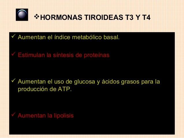 HORMONAS TIROIDEAS T3 Y T4 Aumentan el índice metabólico basal. Estimulan la síntesis de proteínas Aumentan el uso de ...