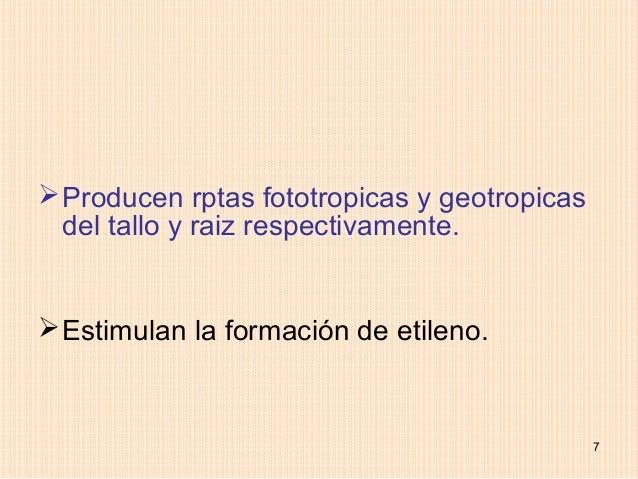  Producen rptas fototropicas y geotropicas  del tallo y raiz respectivamente. Estimulan la formación de etileno.        ...