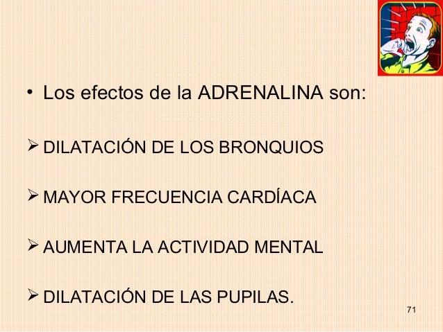 • Los efectos de la ADRENALINA son: DILATACIÓN DE LOS BRONQUIOS MAYOR FRECUENCIA CARDÍACA AUMENTA LA ACTIVIDAD MENTAL ...