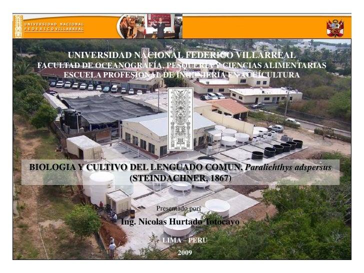 UNIVERSIDAD NACIONAL FEDERICO VILLARREAL FACULTAD DE OCEANOGRAFÍA, PESQUERÍA Y CIENCIAS ALIMENTARIAS      ESCUELA PROFESIO...