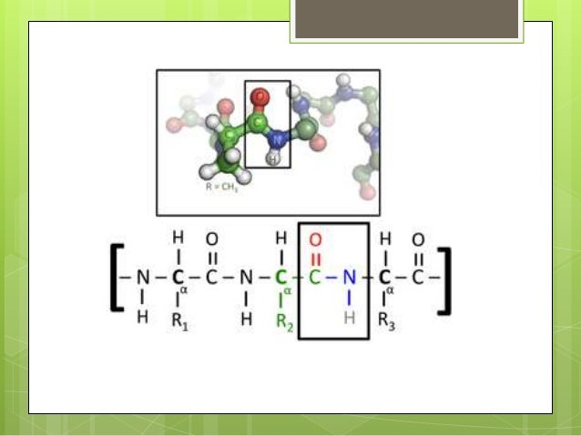 what is the importance of chelates in biology The word chelate derives from the greek word chel, meaning a crab's claw, and refers to the pincer-like manner in which the metal is bound chemically, a chelate is a.