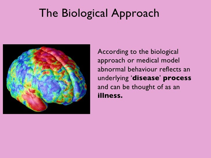 biological approach A summary of biological approaches in 's personality learn exactly what happened in this chapter, scene, or section of personality and what it means perfect for acing essays, tests, and quizzes, as well as for writing lesson plans.