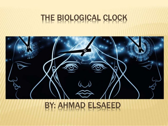 THE BIOLOGICAL CLOCK  BY: AHMAD ELSAEED