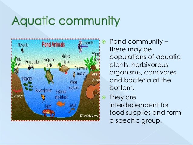 Biological communities