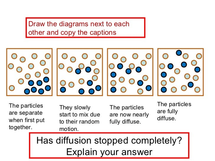 Biology Diffusion Diagram Trusted Wiring Diagrams