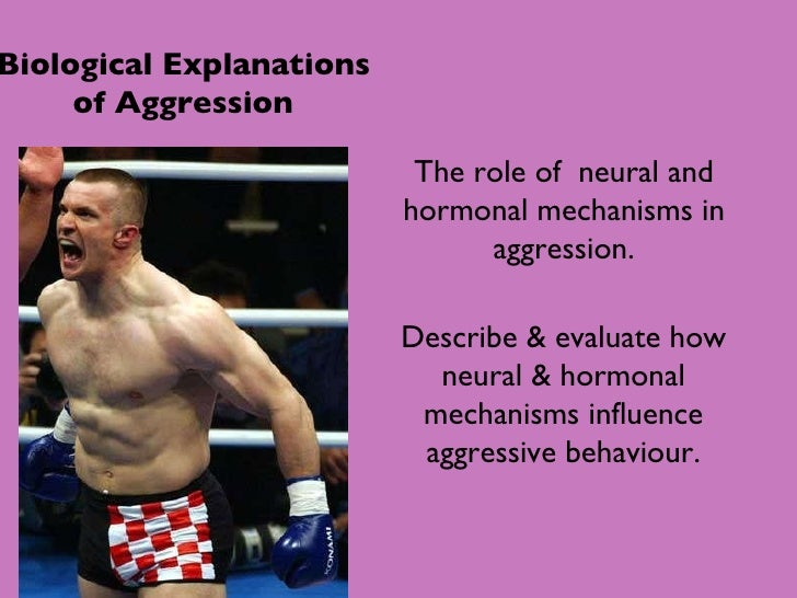 Biological Explanations of Aggression The role of  neural and hormonal mechanisms in aggression. Describe & evaluate how n...