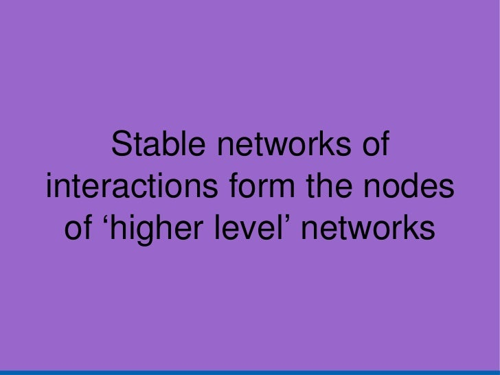 Stable networks of interactions form the nodes of 'higher level' networks