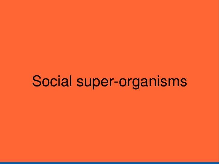 Social super-organisms