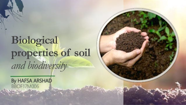 Biological properties of soil and biodiversity By HAFSA ARSHAD BBOF17M006