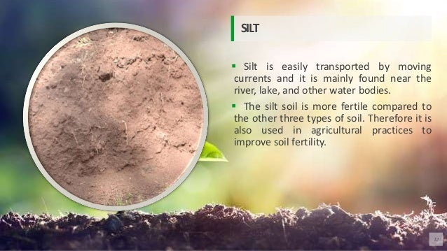  Silt is easily transported by moving currents and it is mainly found near the river, lake, and other water bodies.  The...