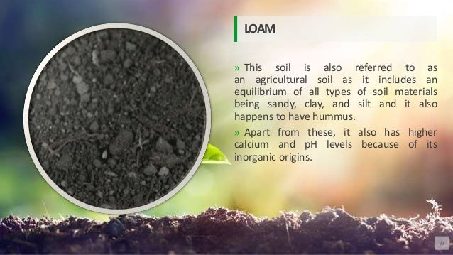 » This soil is also referred to as an agricultural soil as it includes an equilibrium of all types of soil materials being...