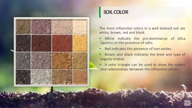 The most influential colors in a well drained soil are white, brown, red and black.  White indicate the pre-dominance of ...