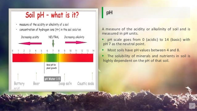 A measure of the acidity or alkalinity of soil and is measured in pH units.  pH scale goes from 0 (acidic) to 14 (basic) ...