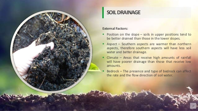 External Factors:  Position on the slope – soils in upper positions tend to be better drained than those in the lower slo...